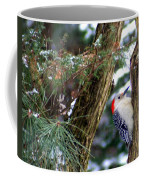 Young Red-bellied Woodpecker Coffee Mug