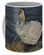 Young Swan IIi Coffee Mug