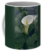Zantedeshia Aethiopica African Flower Coffee Mug