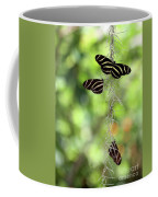Zebra Butterflies Hanging Out Coffee Mug