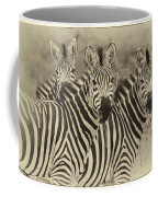 Zebra Trio Coffee Mug