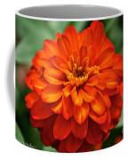 Zinnia Flare Coffee Mug