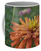 Zinnia Up Close 2823 Coffee Mug