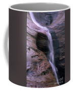 Zion Summer Waterfall Coffee Mug