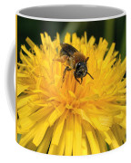 A Bee In A Dandelion Coffee Mug