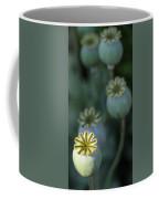 After The Flower 3 Coffee Mug