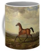 An Arab Thoroughbred At Schloss Blutenburg Coffee Mug