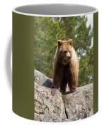 Brown Bear 4 Coffee Mug