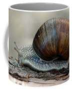Burgundy Snail Coffee Mug