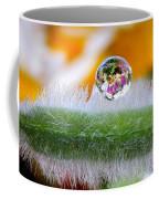 Drop Of Rain On The Pod Lupine Coffee Mug