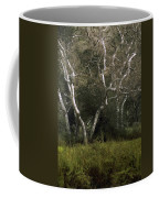 Dv Creek Trees Coffee Mug