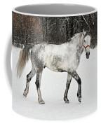 Light  Grey Horse Goes On A Winter Glade  Coffee Mug