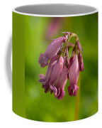 Pacific Bleeding Heart 1 Coffee Mug