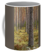 Pine Forest Coffee Mug