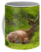 Red Deer Coffee Mug
