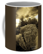 Shrub In Santa Fe Coffee Mug