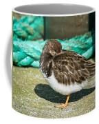 Sleepy Turnstone At Padstow Harbour Coffee Mug