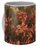 Spirea 1280 Coffee Mug