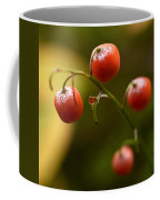 The Berries Of The Lily Of The Valley Coffee Mug