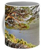 Warmth  Of The Pine Branch. Coffee Mug