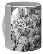 India: Monkey Temple Coffee Mug