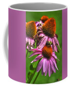 01 Bee And Echinacea Coffee Mug