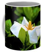 01142017084 Coffee Mug