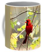 0138 - Cardinal Coffee Mug