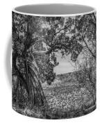 030715 Palo Duro Canyon 105 6 7 Coffee Mug