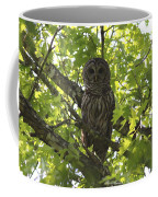 0313-010 - Barred Owl Coffee Mug