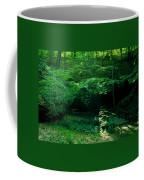 042407-45 Coffee Mug
