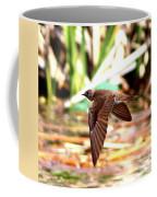 0518 - Northern Rough-winged Swallow Coffee Mug