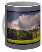 090717-56 Coffee Mug
