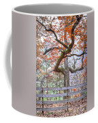 0981 Fall Colors At Starved Rock State Park Coffee Mug