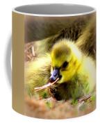 0983 - Canada Goose Coffee Mug