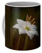 Arctic Starflower Coffee Mug