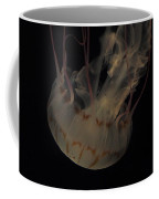 23-01-17 Coffee Mug