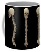3d Rendering Of Human Vertebral Column Coffee Mug