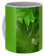 4327 - Leaves Coffee Mug