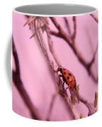 A Ladybug   Coffee Mug