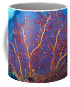 A Red Sea Fan With Purple Anthias Fish Coffee Mug