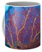 A Red Sea Fan With Purple Anthias Fish Coffee Mug