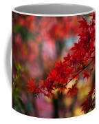 Acer Kaleidoscope Coffee Mug by Mike Reid