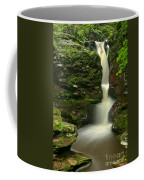 Pennsylvania Adams Falls Coffee Mug