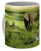 African Elephant In Swamp Coffee Mug