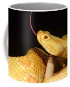 Albino Brazilian Rattlesnake Coffee Mug