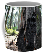 Alta Vista Giant Sequoia Coffee Mug