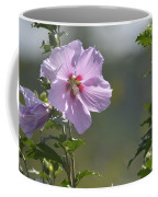 Althea Rose Of Sharon Hibiscus Bloom Coffee Mug