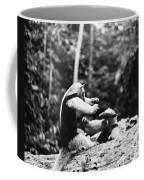 Amazon: Anteater Coffee Mug