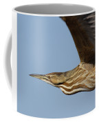 American Bittern Flies By Coffee Mug